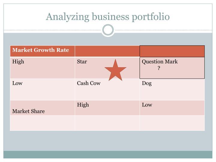 Analyzing business portfolio