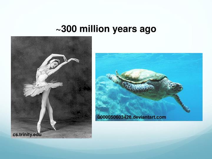 ~300 million years ago