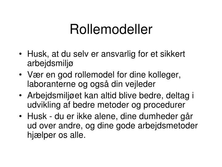 Rollemodeller
