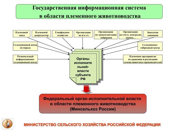 Государственная информационная система
