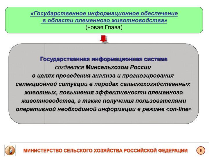 «Государственное информационное обеспечение