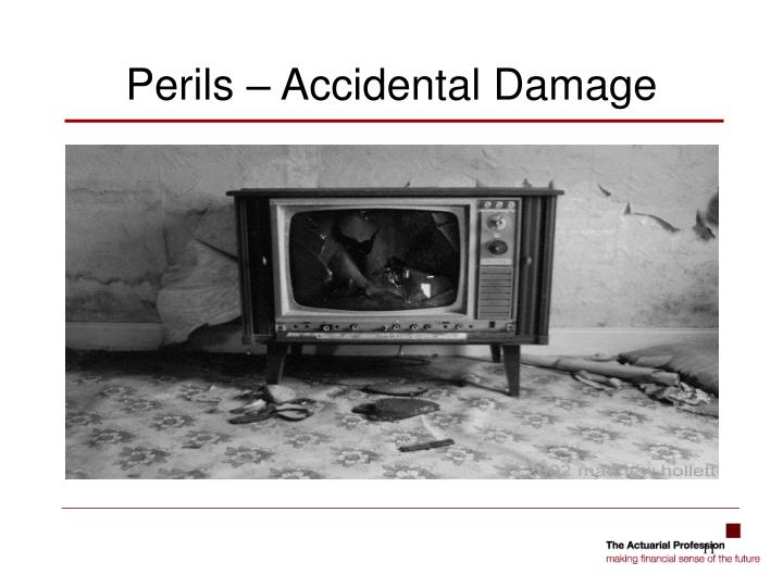 Perils – Accidental Damage