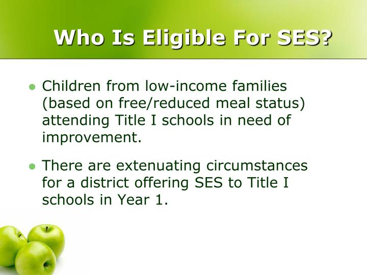 Who Is Eligible For SES?