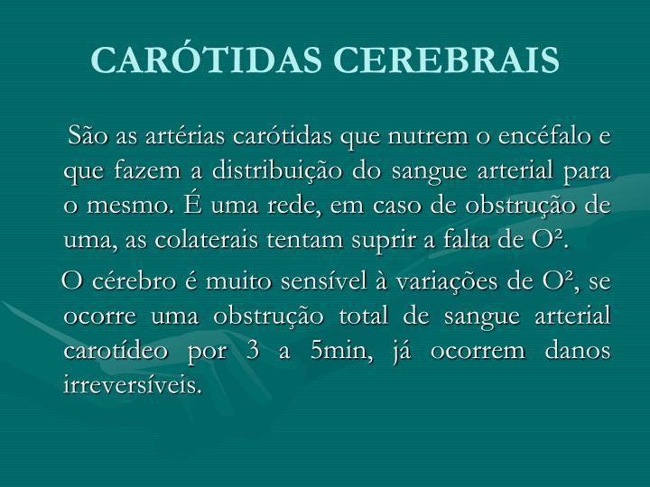 CARÓTIDAS CEREBRAIS