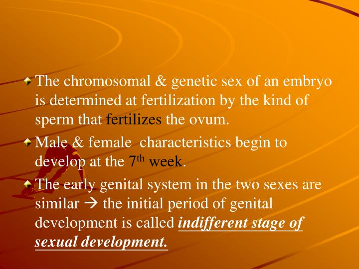 The chromosomal & genetic sex of an embryo is determined at fertilization by the kind of sperm that