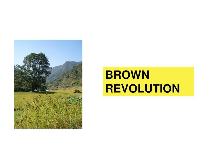 BROWN REVOLUTION