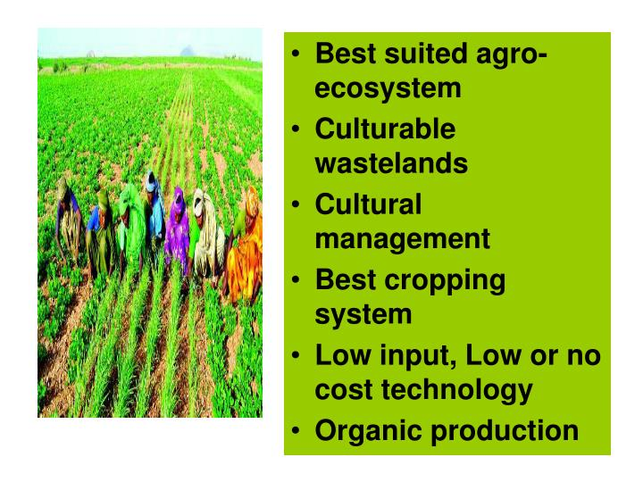 Best suited agro-ecosystem