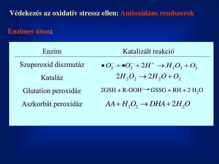 Védekezés az oxidatív stressz ellen: