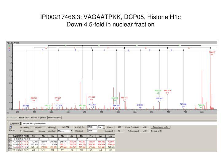 IPI00217466.3: VAGAATPKK, DCP05, Histone H1c