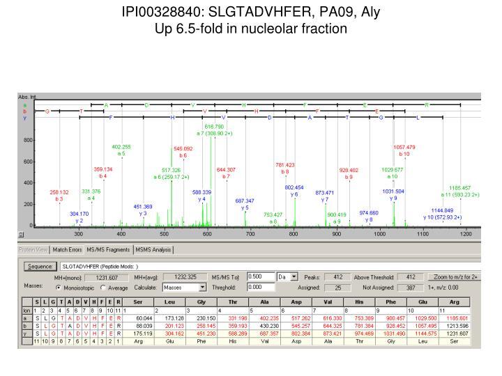 IPI00328840: SLGTADVHFER, PA09, Aly