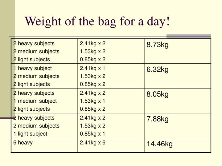 Weight of the bag for a day!