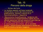 tab 15 percorsi della droga