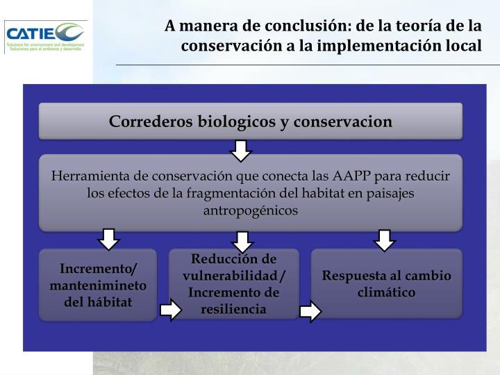 A manera de conclusión: de la teoría de la conservación a la implementación local
