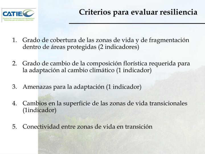 Criterios para evaluar resiliencia