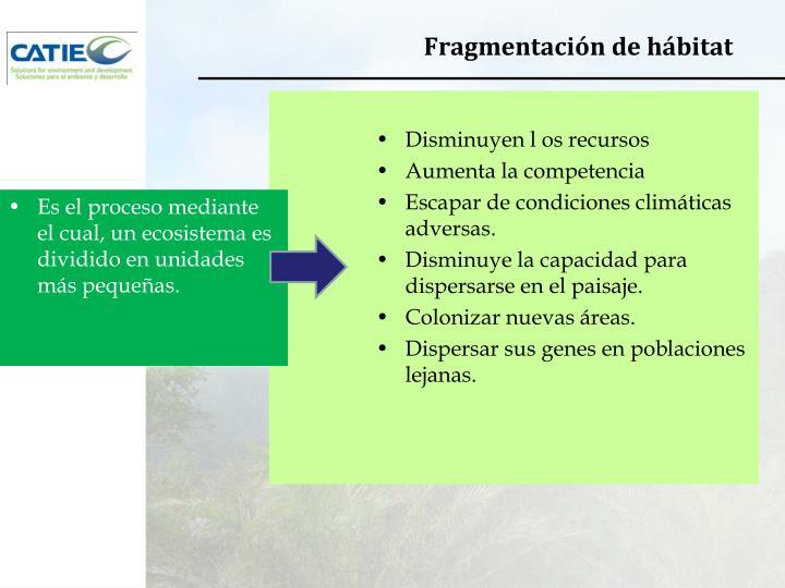 Fragmentación de hábitat