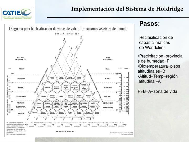 Implementación del Sistema de
