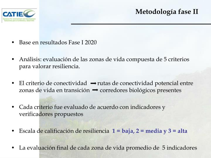 Metodología fase II