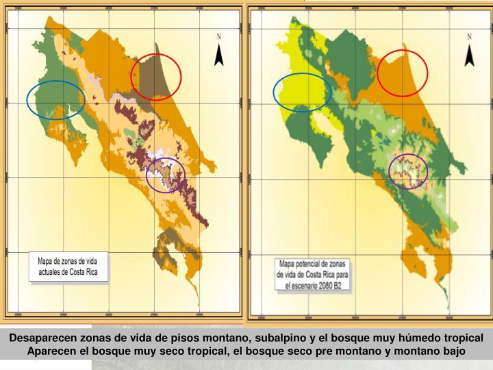 Desaparecen zonas de vida de pisos montano, subalpino y el bosque muy húmedo tropical