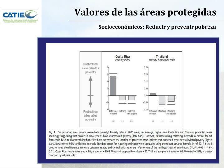 Valores de las áreas protegidas