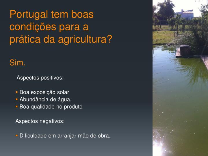 Portugal tem boas condições para a prática da agricultura?