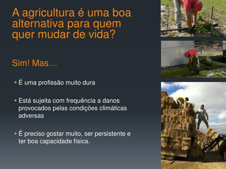 A agricultura é uma boa alternativa para quem quer mudar de vida?