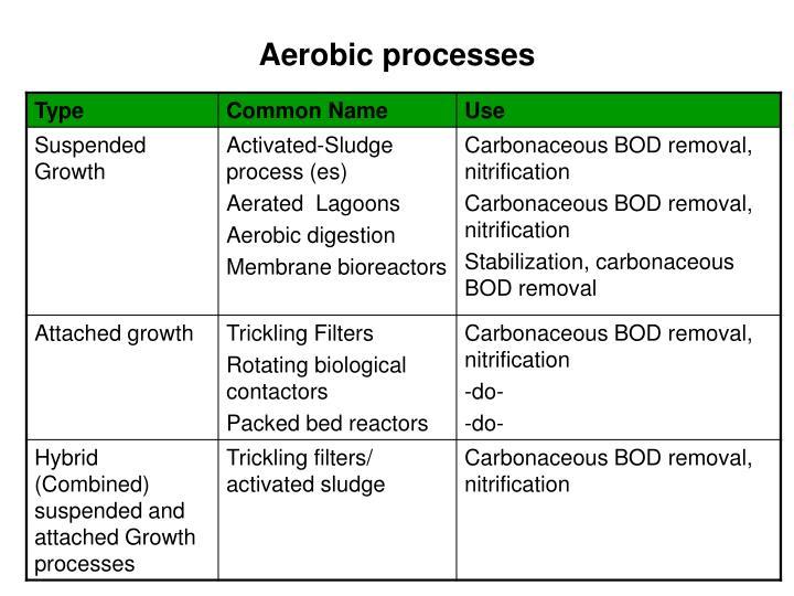 Aerobic processes