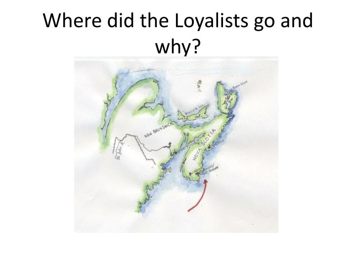 Where did the Loyalists go and why?