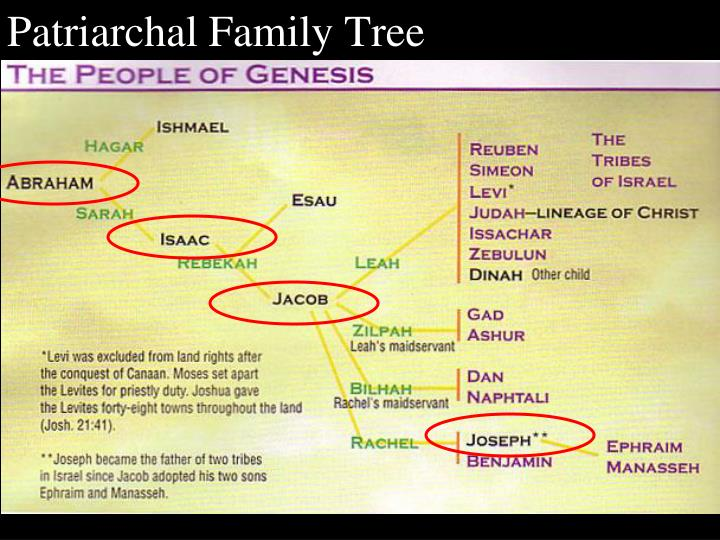Patriarchal Family Tree