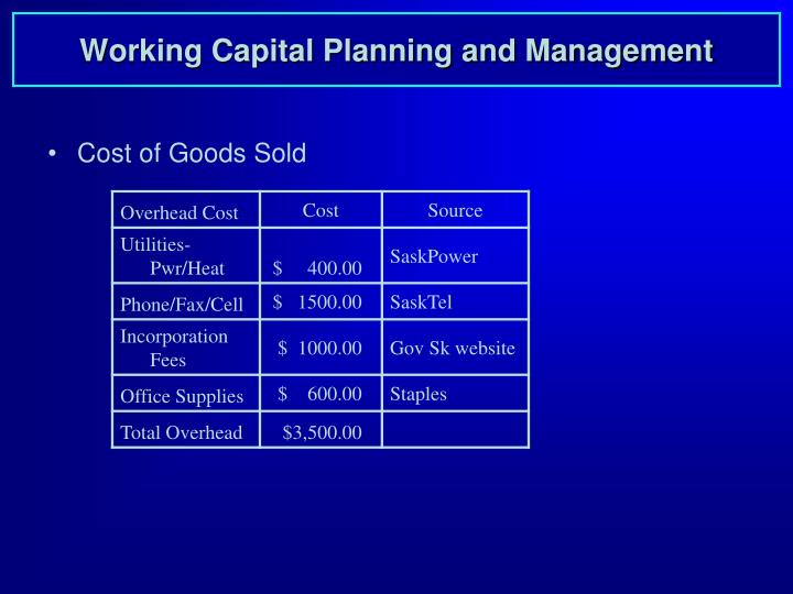 Working Capital Planning and Management