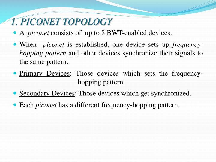 1. PICONET TOPOLOGY