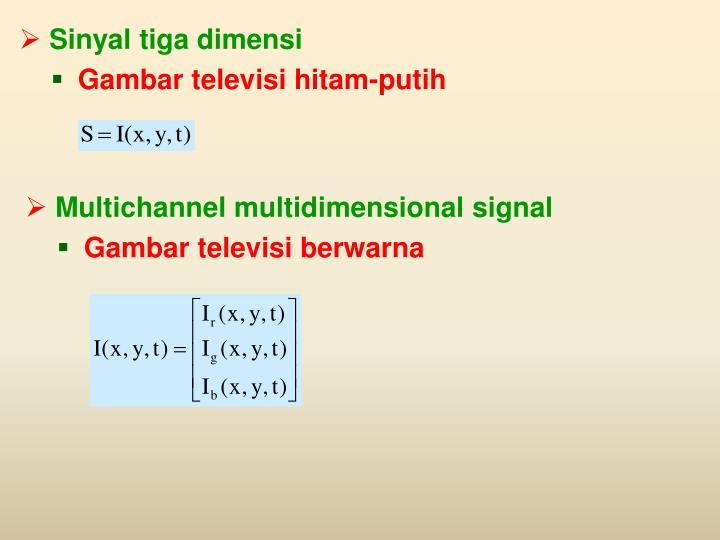 Sinyal tiga dimensi