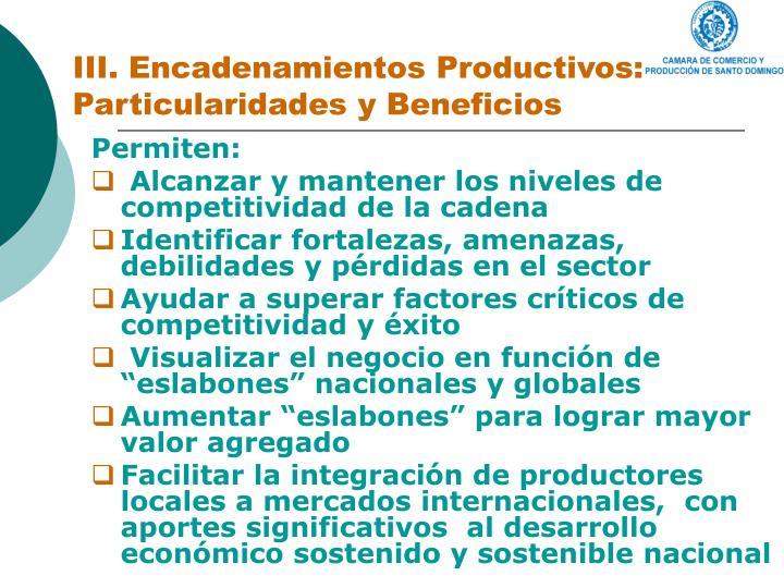 III. Encadenamientos Productivos: Particularidades y Beneficios