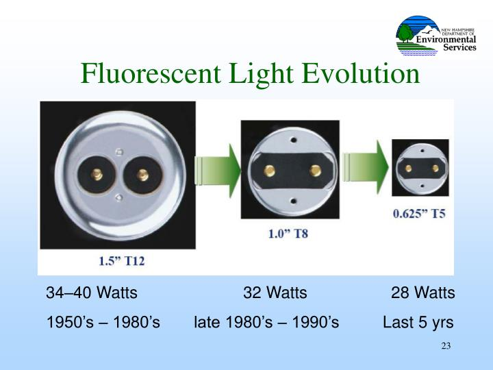 Fluorescent Light Evolution
