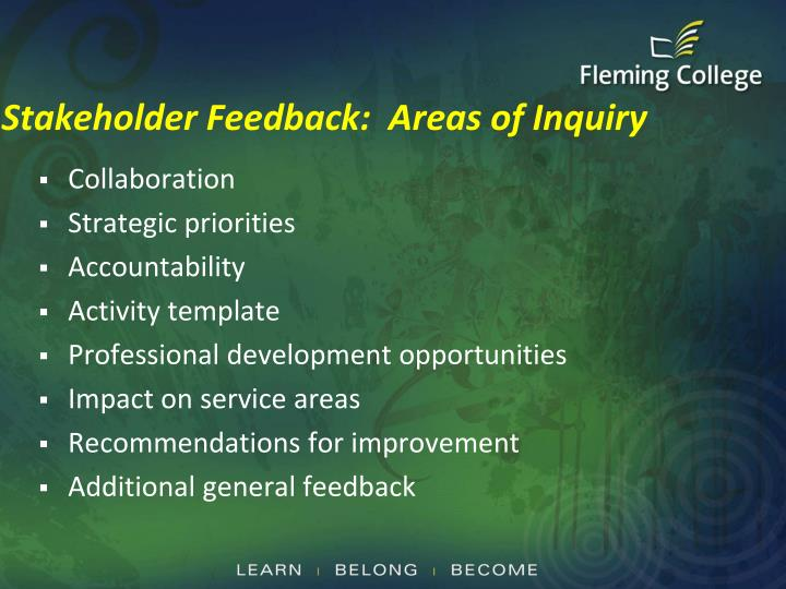 Stakeholder Feedback:  Areas of Inquiry