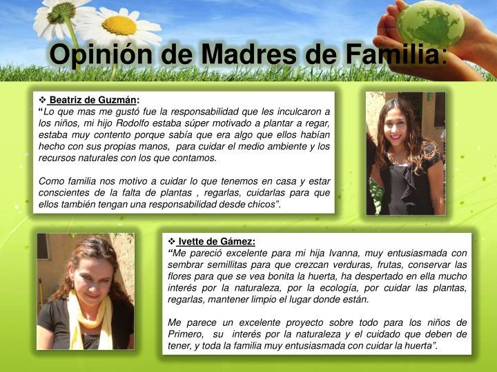 Opinión de Madres de Familia