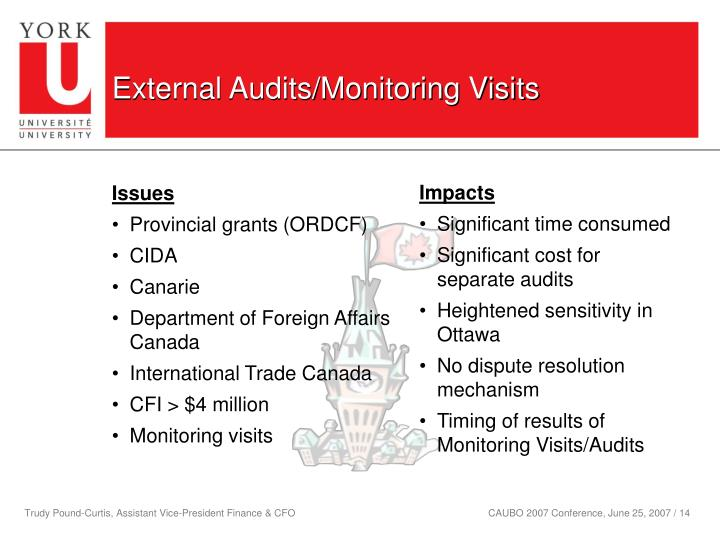 External Audits/Monitoring Visits