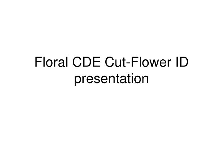floral cde cut flower id presentation