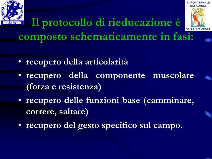 Il protocollo di rieducazione è composto schematicamente in fasi: