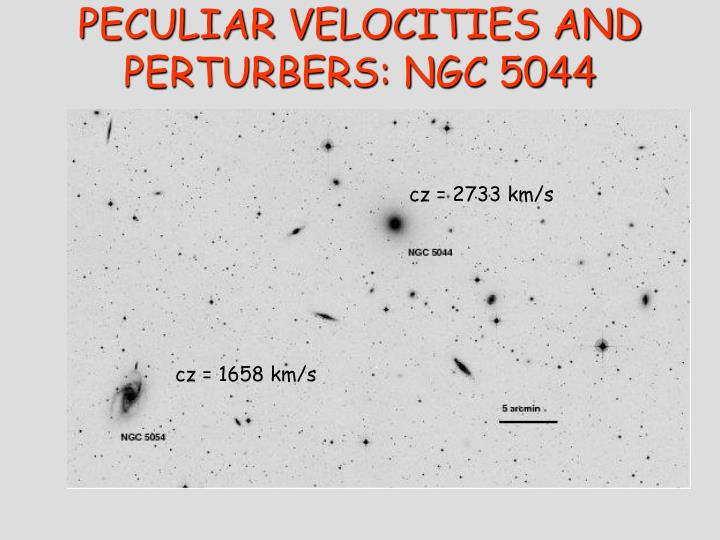 PECULIAR VELOCITIES AND PERTURBERS: NGC 5044