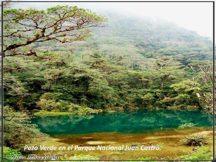 Pozo Verde en el Parque Nacional Juan Castro.