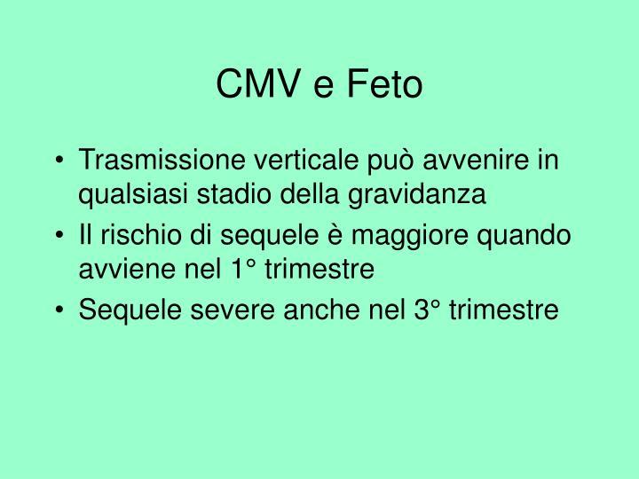 CMV e Feto