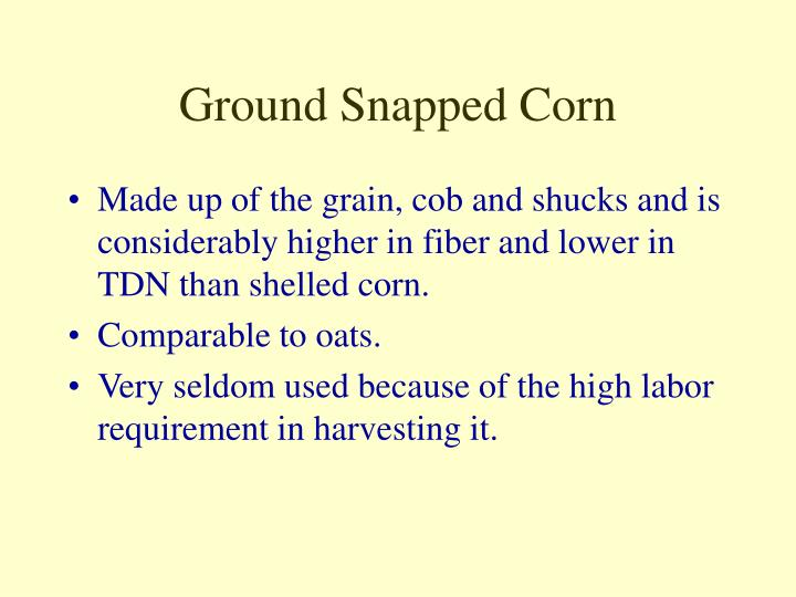 Ground Snapped Corn