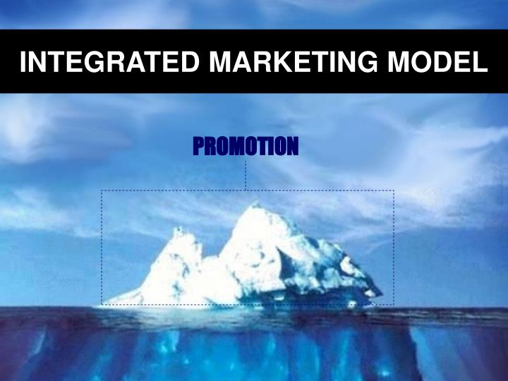 INTEGRATED MARKETING MODEL