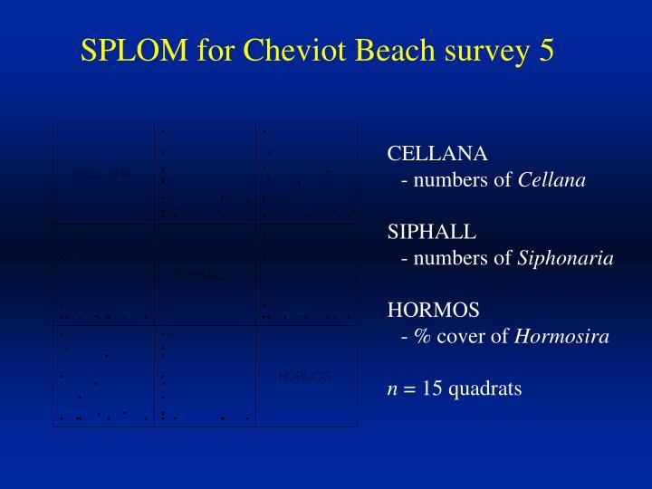 SPLOM for Cheviot Beach survey 5
