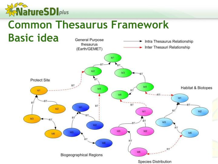 Common Thesaurus Framework