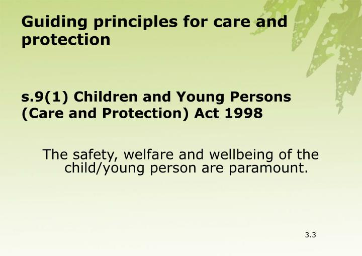 Guiding principles for care and protection