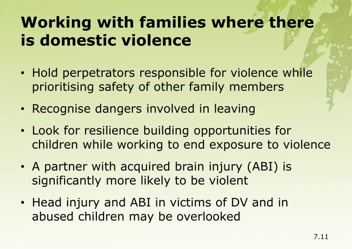 Working with families where there is domestic violence