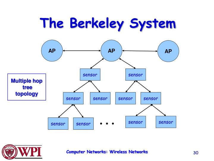 The Berkeley System