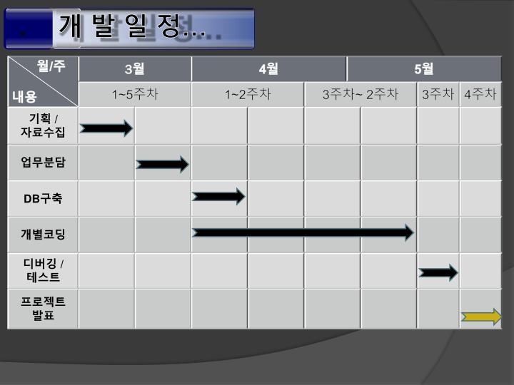 개 발 일 정