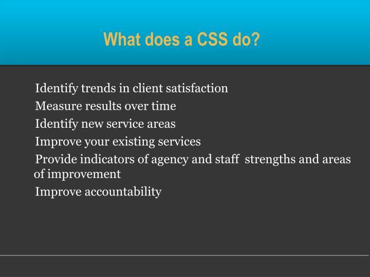 What does a CSS do?